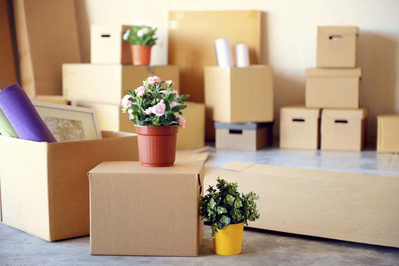 Kiralık Ev Nasıl Dekore Edilmeli? Kiracılar için Dekorasyon Önerileri