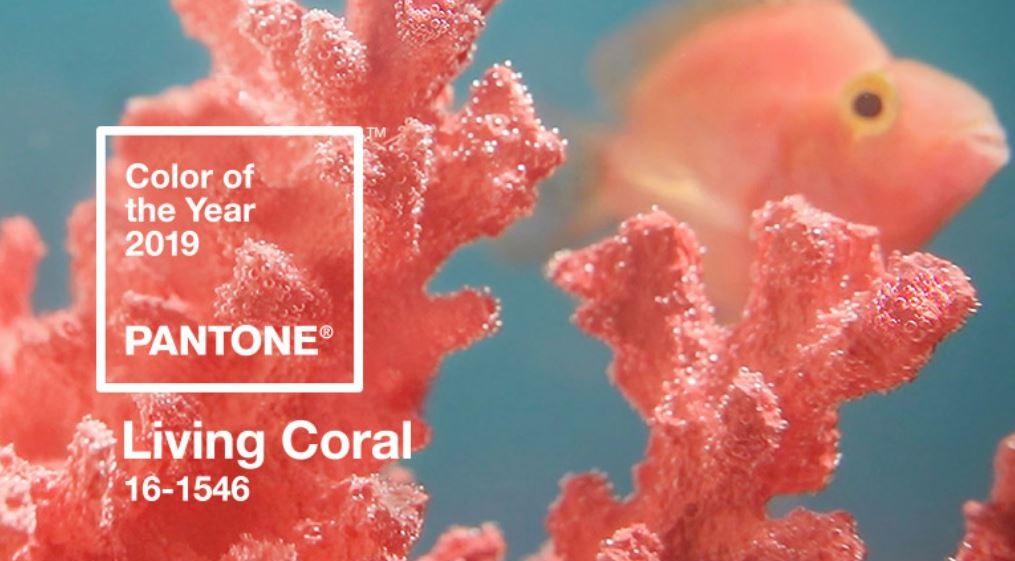 Pantone 2019'un Rengini Açıkladı: Canlı Mercan (Living Coral)