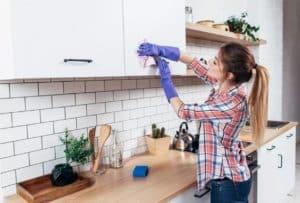 aylık ev temizlik listesi