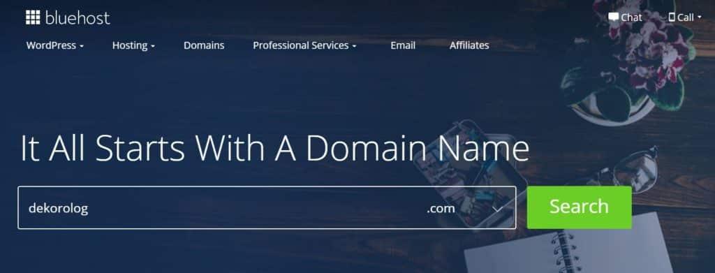 domain nasıl sorgulanır